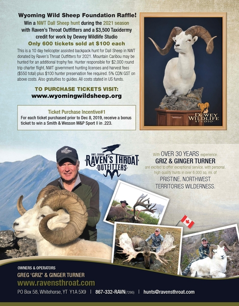 2021 Dall Sheep Drawing!